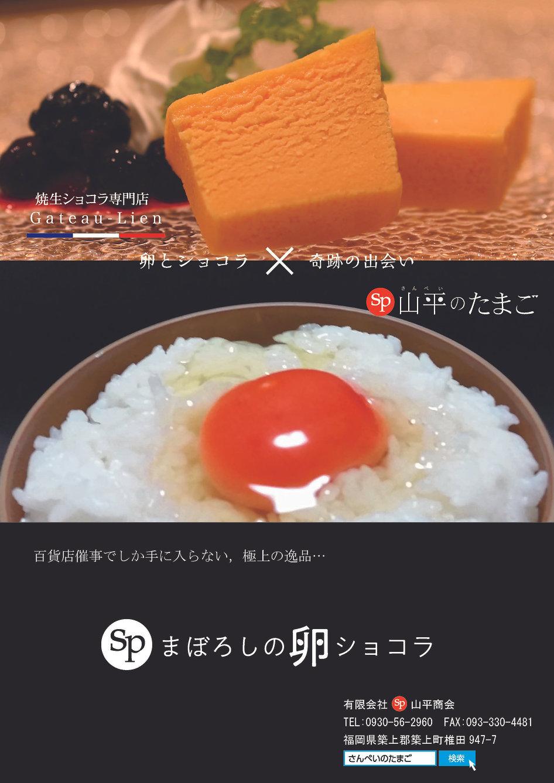 まぼろしの卵ショコラチラシ裏(2020).jpg