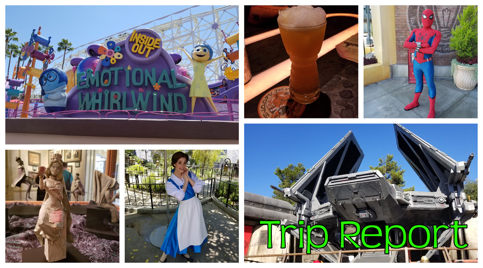 TRIP REPORT: Disneyland Resort - July 13 & 14, 2019