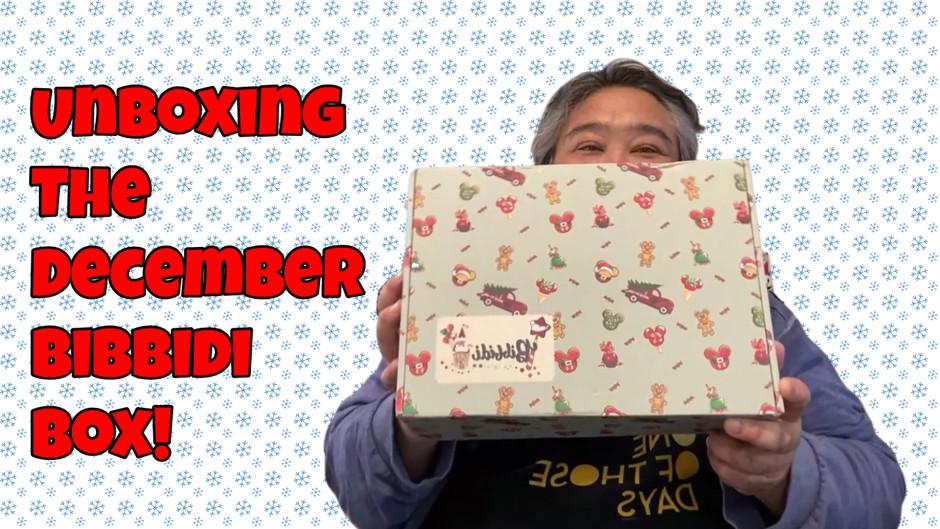 Unboxing The December Bibbidi Box