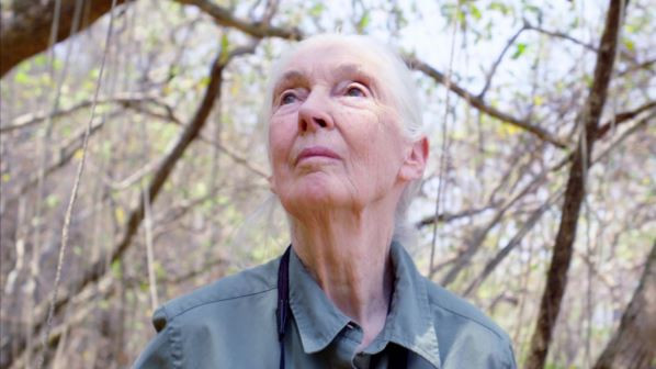 REVIEW: Jane Goodall: The Hope