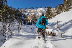 Snowshoeing the Yellowstone Ledges