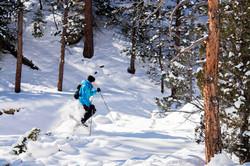 Snowshoeing Yellowstone Ledge Trail
