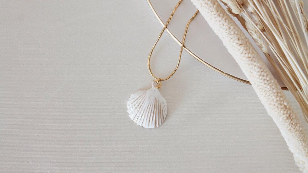 Beyaz Deniz kabuğu Kolye