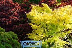 Botanischer Garten-22