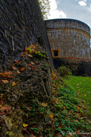 Bielefeld im Herbst (9 von 31).jpg
