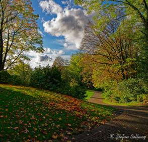Bielefeld im Herbst (10 von 31).jpg