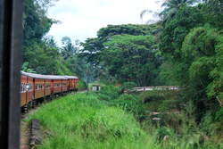 Minalism Photography Sri Lanka