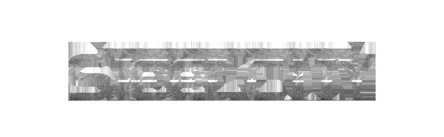 LOGO SteelCity
