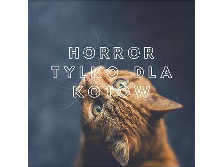 Pierwszy horror dla kotów