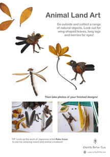 Land Art Activity - Animals & Insects