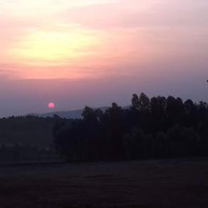Pilgrim Posts: A Ray of Hope