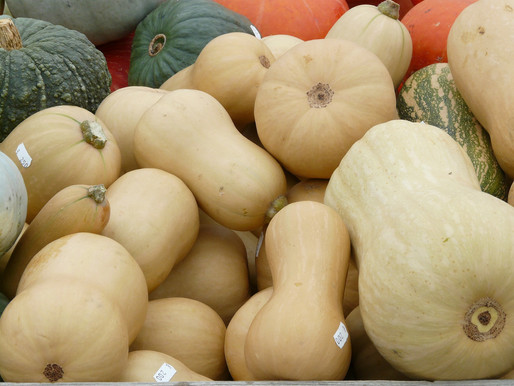 Let's Talk Nutrition: Winter Squash