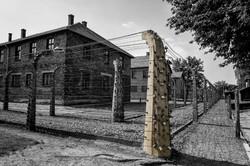 _SEB5377-Auschwitz