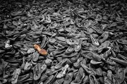 P8120108-Auschwitz