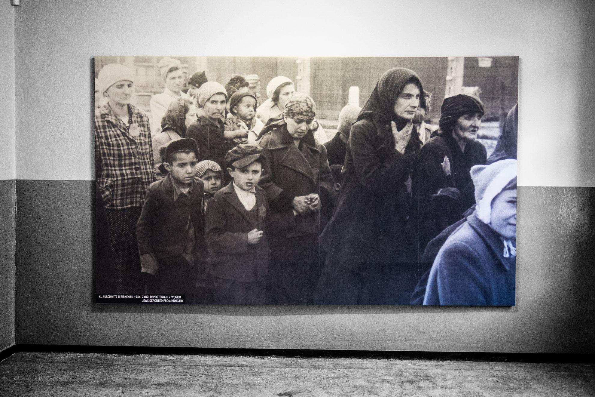 P8120102-Auschwitz
