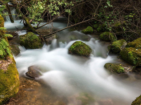 Río Majaceite.