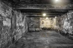 P8120125 Auschwitz