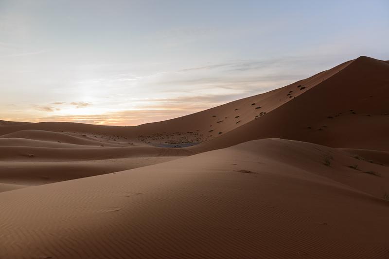Dunas del Sahara