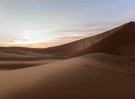 Buscando el Sahara.