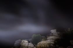 Linterna _boreal__