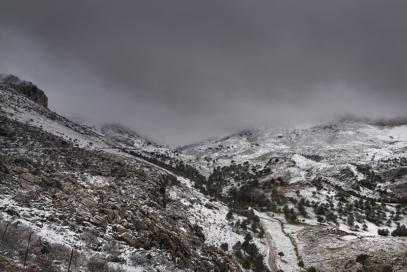 Carretera de Ronda a El Burgo.