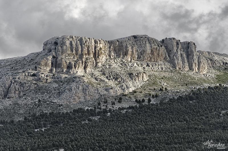 Sierra Ortegicar