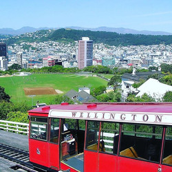 Visiting Wellington for conference or short meeting_ Book one day PRIVATE TOUR for sightseeing with