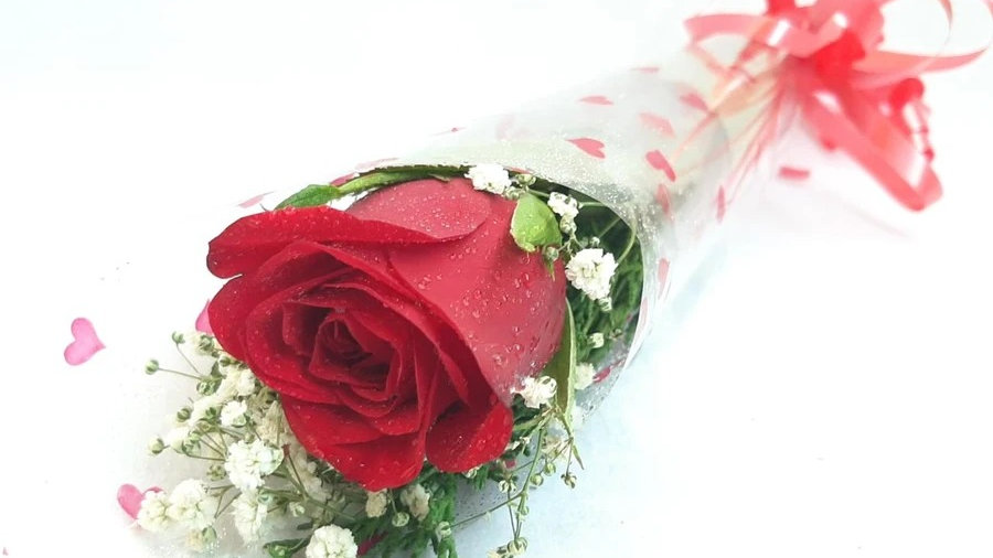 Single Red Rose Bouquet
