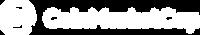 coinmarketcap-vector-logo white.png
