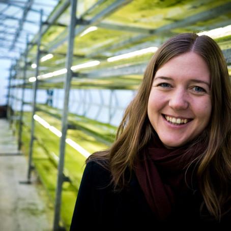 Västkustalger odlas för solceller - nu efterfrågas de av världens exklusiva hudvårdsmärken