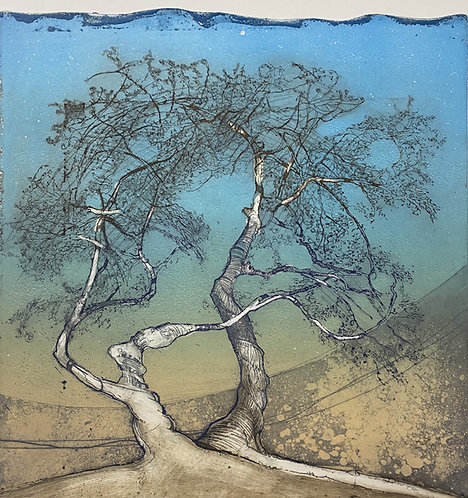 judas tree I