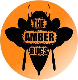 The Amber Bugs