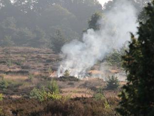Natuurbrand, fase 2