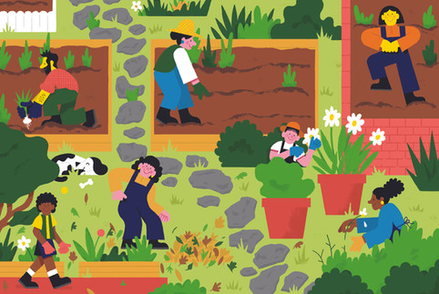 andrew werdna garden illustration .jpg