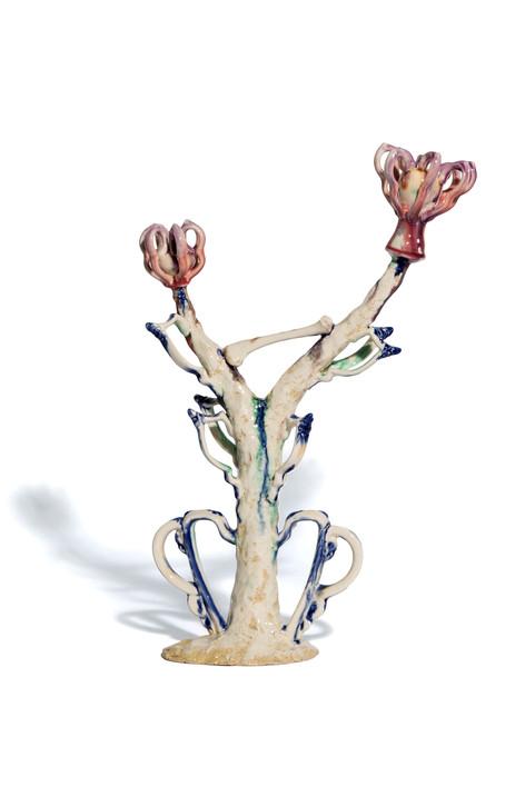Fleshy Knobby Handle Flowers