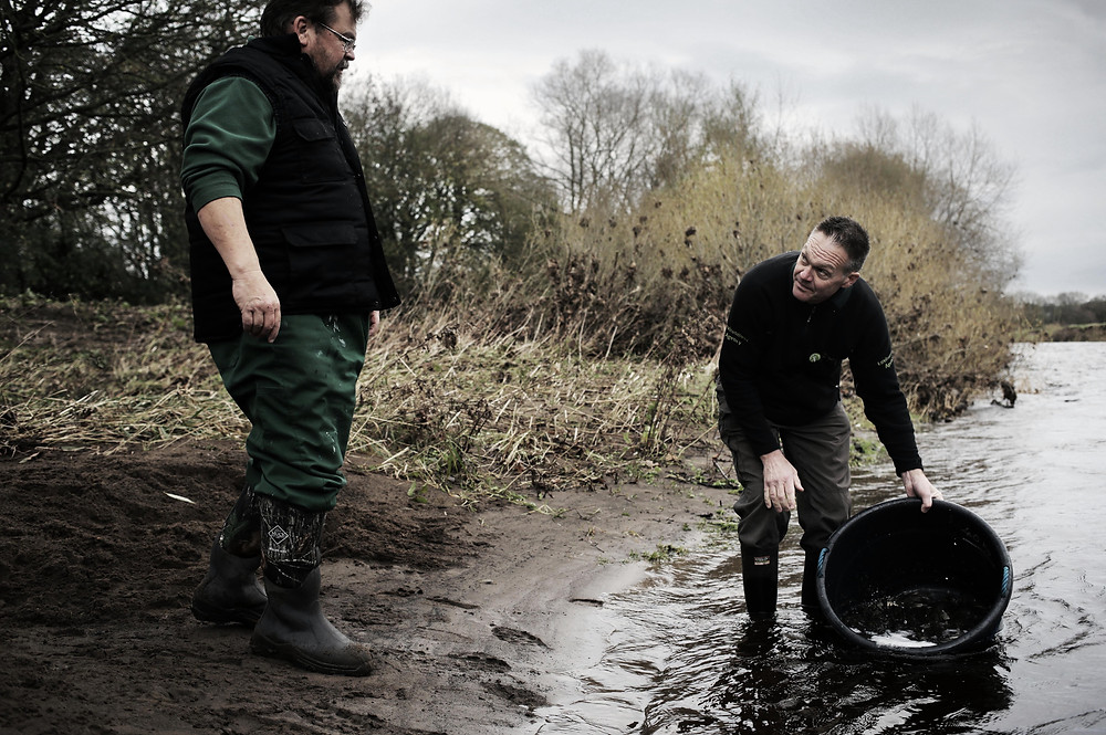 environment agency release fish