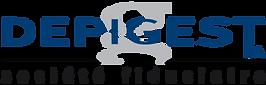 Depigest-logo.png