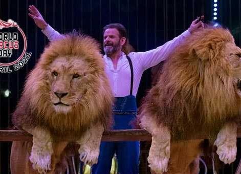 Cyrkowa wycieczka dookoła świata z Circusfans Italia - STREAM