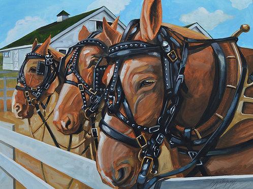 PULL HORSES