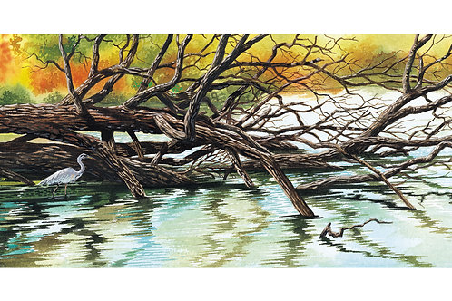 FOX RIVER DEADFALL