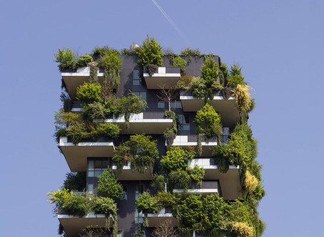 #2 Webinar: Sustainability and the future of real estate