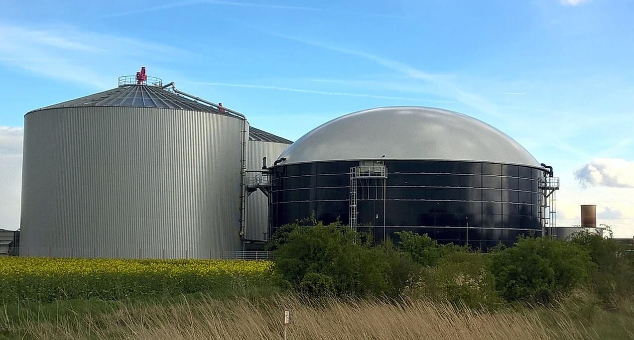 Biogas and biomass.
