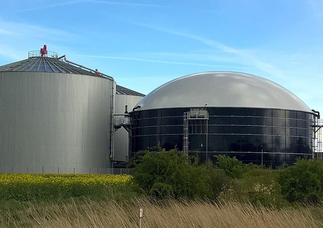 Biogas and biomass.