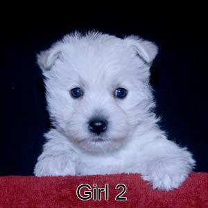 12-29-20 Chantilly Girl 2.JPG