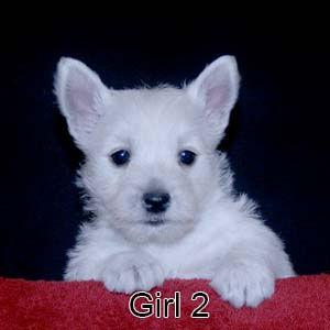 1-19-21 Luna Girl 2.JPG