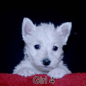 1-19-21 Luna Girl 4.JPG