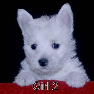 7-7-21 Luna Girl 2.JPG