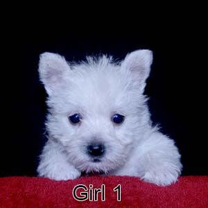 6-23-20 Jasmine Girl 1.JPG