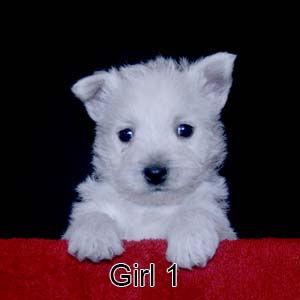 6-9-20 Noel Girl 1.JPG
