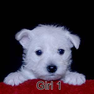 7-7-21 Jasmine Girl 1.JPG